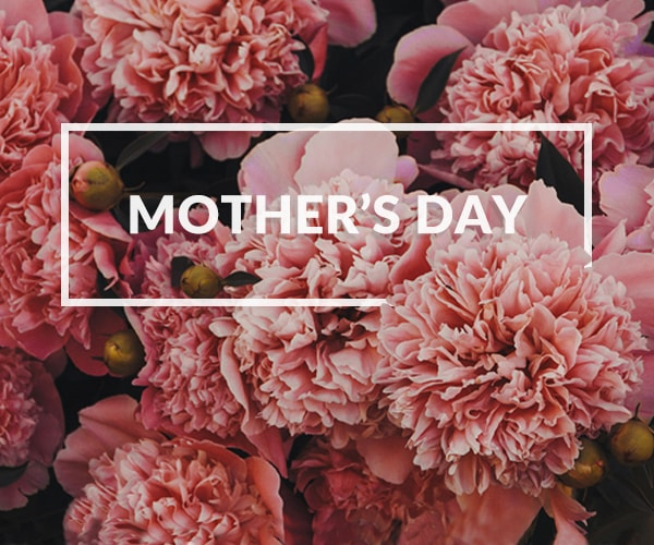 Mothering Sunday at The Punch Bowl Inn